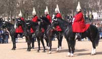 Horse Guard Parade image